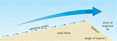 features produced by wind deposition a2 level level
