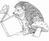 Hedgehog Coloring Pages Animals Hedgehogs Animal Colouring Adult sketch template