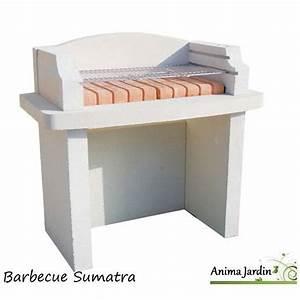 Barbecue En Pierre Mr Bricolage : barbecue en pierre bois ~ Dallasstarsshop.com Idées de Décoration