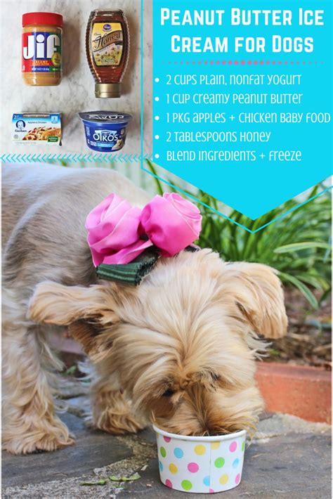 dog ice cream ideas  pinterest summer dog