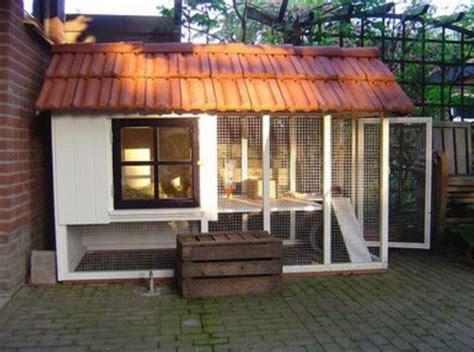 desain kandang kelinci modern bagus rumah impian
