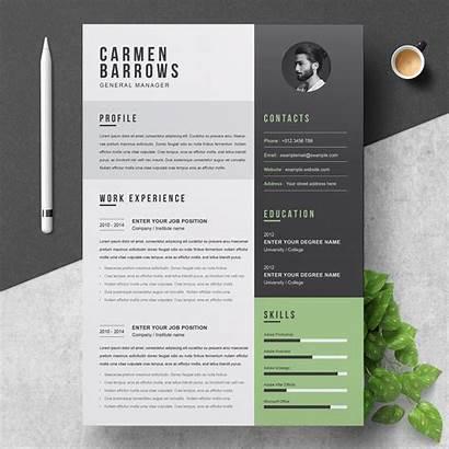 Resume Cv Template Professional Creative Templates Word