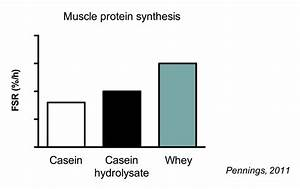 The Ultimate Guide To Muscle Protein Synthesis