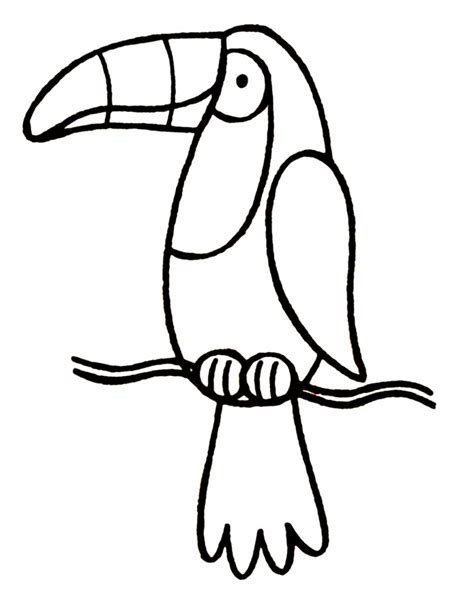 toucan clipart black and white toucan coloring page az coloring pages