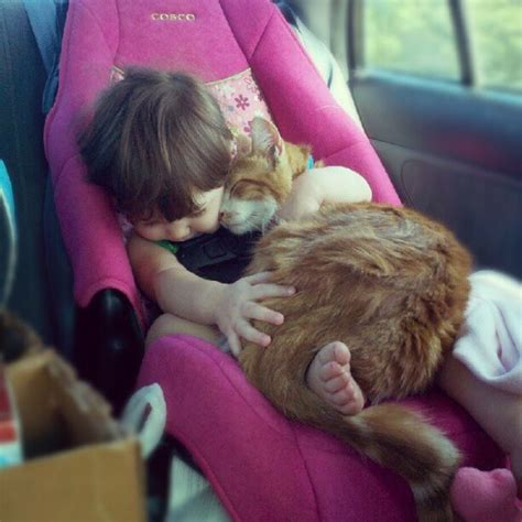 babies and cats cat sleeping with baby 1funny