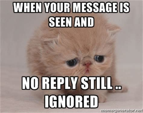 Why You No Reply Meme - how to get suppliers in china to respond to your emails