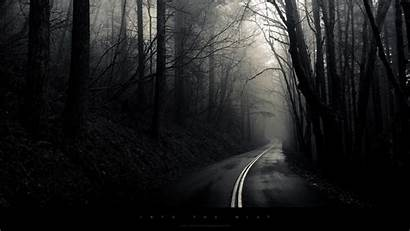 Dark Forest Wallpapers Road Landscape Into Background