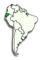 Consulta toda la información acerca de sweet & coffee. Ecuador Coffee