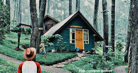 tempat wisata hutan pinus  bandung  cantiknya