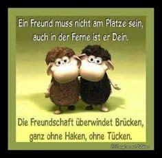 sprueche freundschaft fuer whatsapp status spruechezitate
