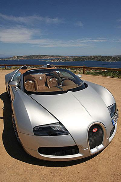 By winning the targa florio for five years straight. Bugatti Veyron Grand Sport 2009 silver (9394771) Jigsaw Puzzle