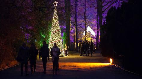 Botanischer Garten Berlin Weihnachtszauber berlin weihnachtszauber im botanischen garten zdfmediathek