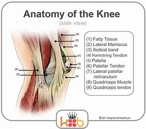 Knee Pain Treatment To Help Relieve Knee Pain