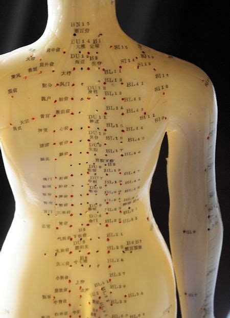 Back Acupuncture Points 2 | Acupressure treatment