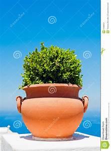 Pot Terre Cuite Ikea : pot de fleurs de terre cuite capri image stock image ~ Dailycaller-alerts.com Idées de Décoration