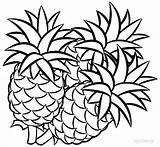 Pineapple Coloring Pages Printable Fruit Drawing Fruits Pineapples Drawings Line Sheet Cool2bkids Easy Apple Sheets Getdrawings Taste Unique Clipartmag Cartoon sketch template