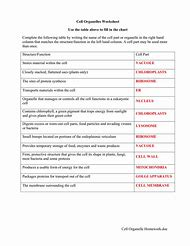 Pictures Cell Organelles Worksheet Answer Key - Leafsea