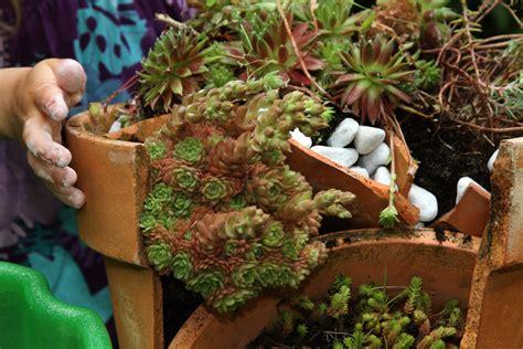 zerbrochenen topf bepflanzen phlorade