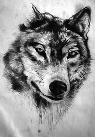 Wolf Head Drawing looks amazing as a tattoo | wolf tattoos | Wolf tattoos, Wolf tattoo design