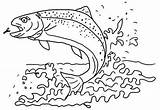 Trout Coloring Fish Pages Apache Wonderful Sheet sketch template