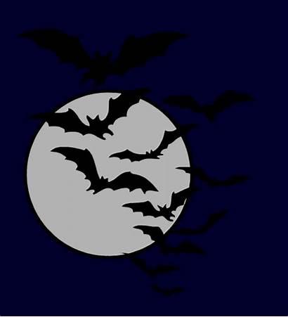 Clipart Bat Night Bats Moon Halloween Flying