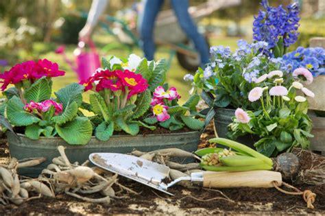 Tipps Für Die Gartenarbeit Im Frühjahr  2018 Test