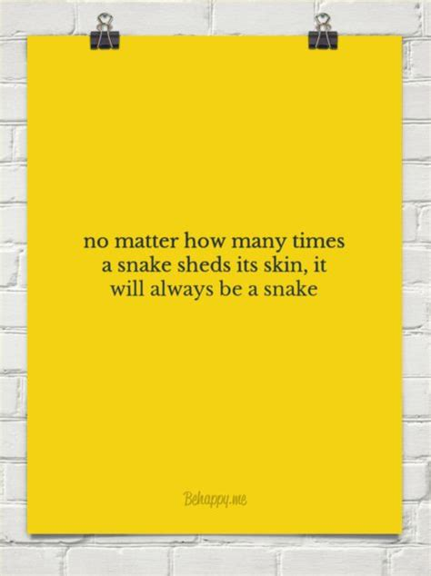 How Many Times Does A Snake Shed Its Skin by 1000 Absent Quotes On Absent