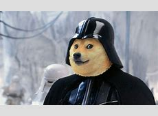 The Dark Days of Dogecoin How Scammers and Bandits