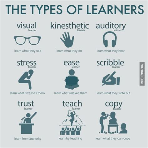 types  learners types  learners ways