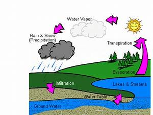 Hydrologic Cycle Diagram Labeled
