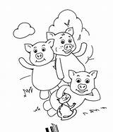 Pigs Coloring Three Pages Printable sketch template