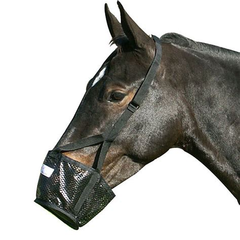 stall muzzle horse soft friend kicking horses muzzles mesh chains grazing cribbing horseplay graze pawing info prevent horsetackco