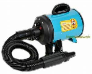 220v 2800w dog pet grooming dryer hair dryer removable pet With dog blow dryer petsmart