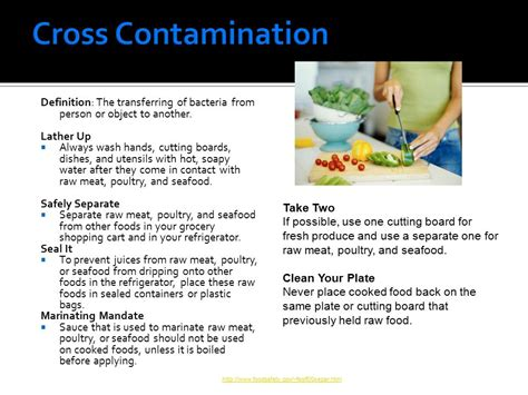 cross contamination is lake county middle schools food handler training guide ppt video online download