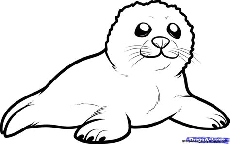 seal clipart black and white seal clipart 46