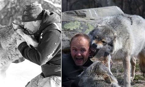 meet  wolfman    pack leader  park