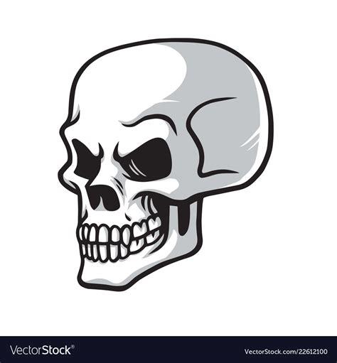 skull cartoon drawing icon royalty  vector image