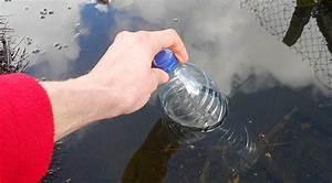 Hivernage Bassin Exterieur : le gel au jardin en 10 questions inspirations desjardins ~ Premium-room.com Idées de Décoration