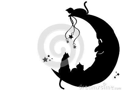 cats   moon stock  image