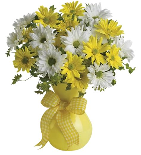Flower Vase Png by Vase With Yellow And White Daisies Png Clipart Picture