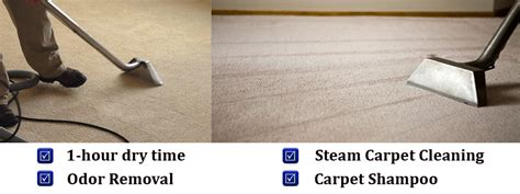 carpet cleaning miami 786 363 3900