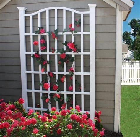 Outdoor Trellis by New Arbors Decorative Garden Flower Plant White