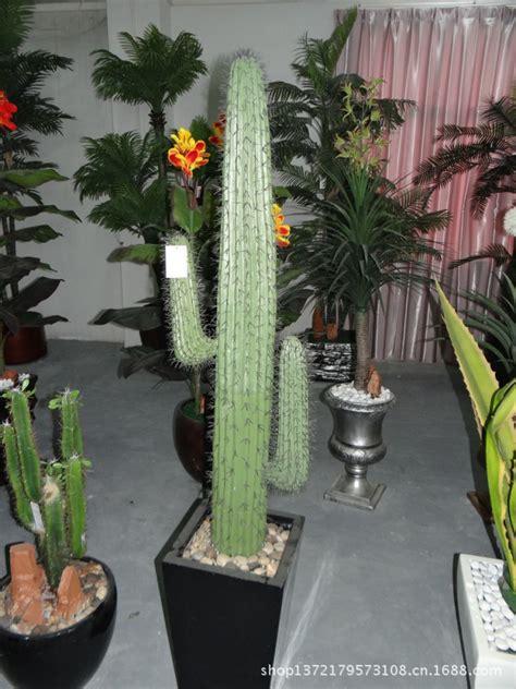artificial cactus plants tropical names  cactus plants