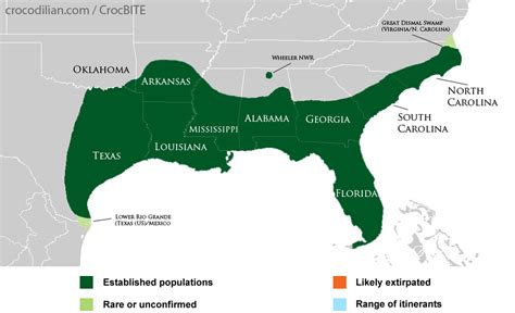 american crocodile range map 100 3922 crocbite