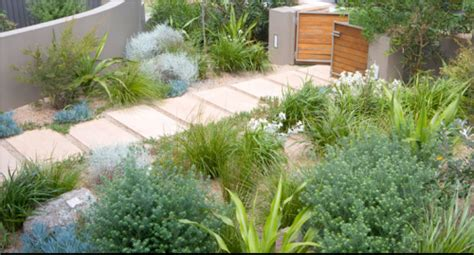 australian coastal garden design the owners of this contemporary coastal home wanted a natural looking garden with native