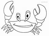 Crab Coloring Pages Drawing Printable Drawings Cool2bkids Kid Outline Paintingvalley Getcolorings sketch template