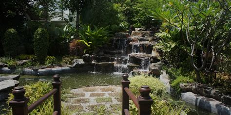 The Thai Landscaping Experts