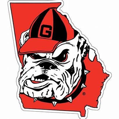 Georgia Bulldog Bulldogs Clipart Uga State Ga