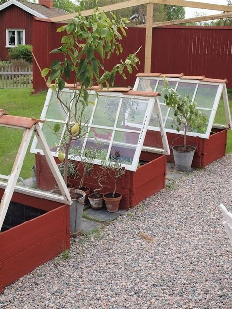 Large or small, building a greenhouse doesn't have to. Greenhouses Made With Salvaged Windows | 1000 in 2020 ...
