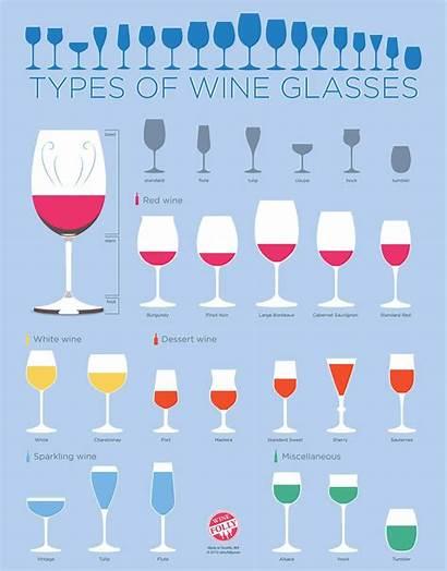 Glasses Wine Bar Guide Types Beer Drinkware